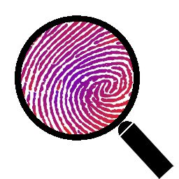 Search for and detect fingerprints